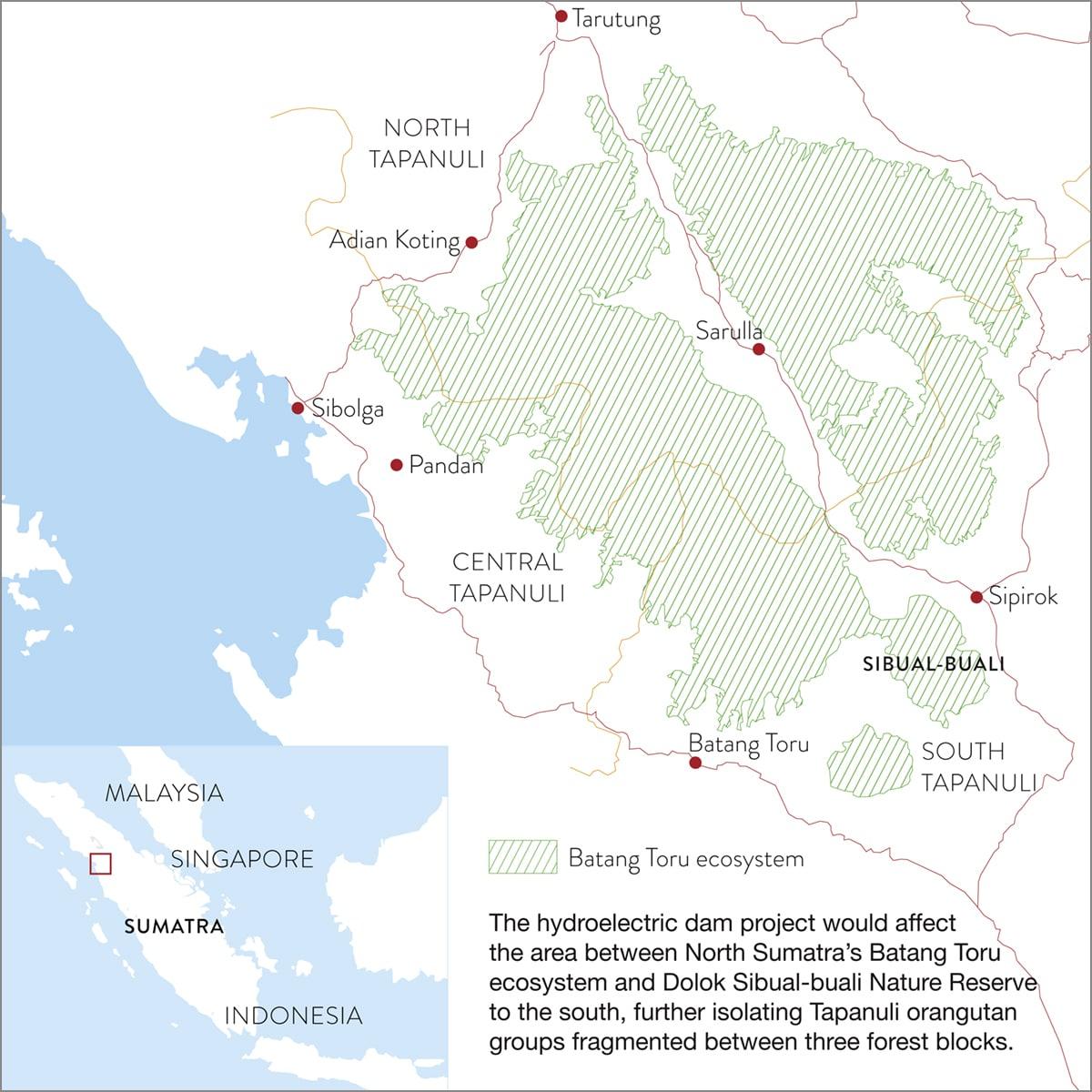 Batan Toru Ecosystem